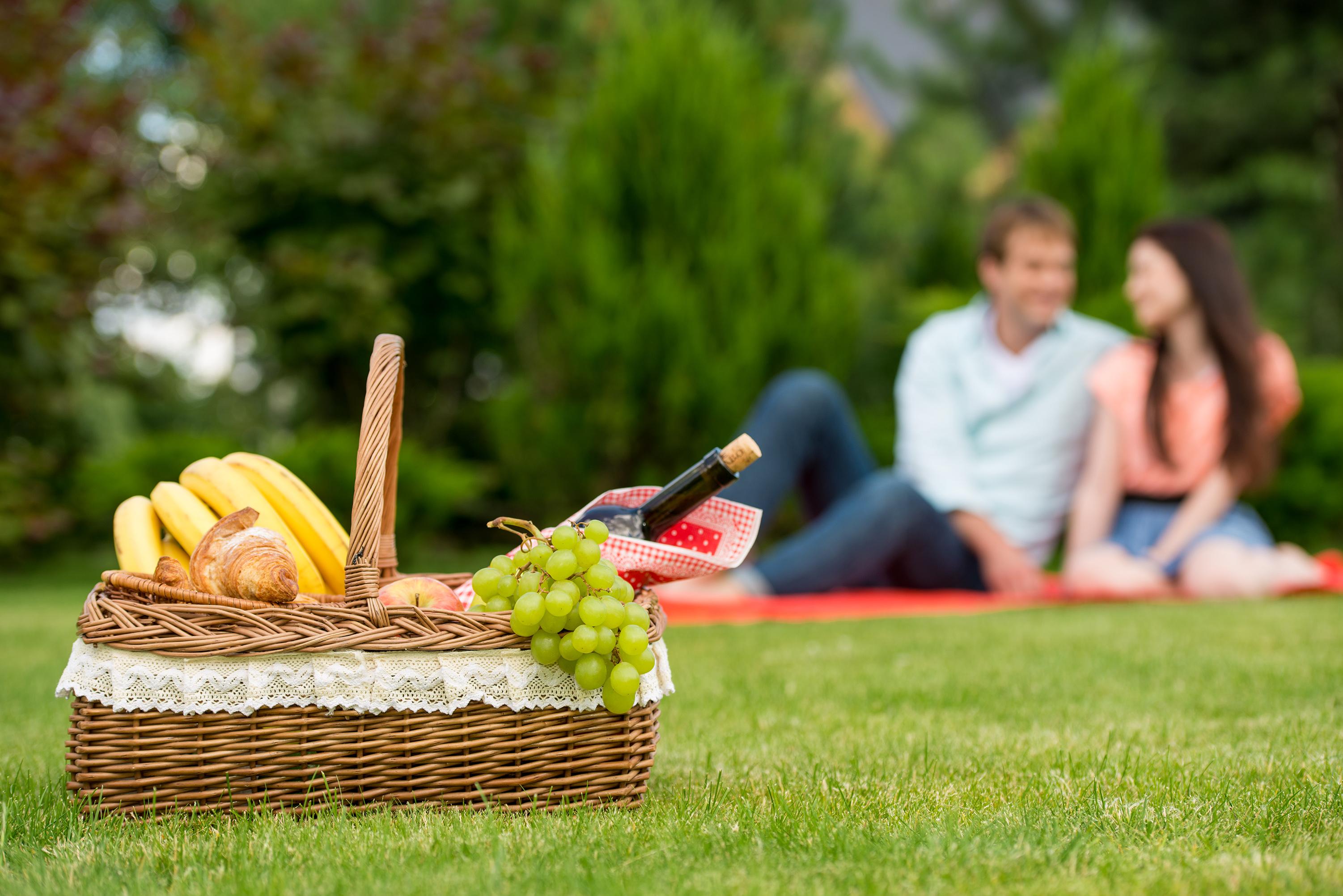 Пікнік на природі